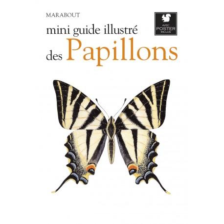 Mini guide illustré des papillons