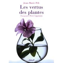 Les vertus des plantes