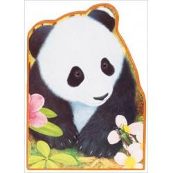 Ping le panda - La Chine
