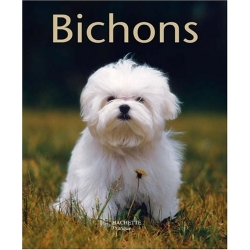 Bichons - Petits Pratiques 28