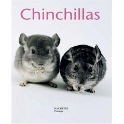Chinchillas - Petits Pratiques 13