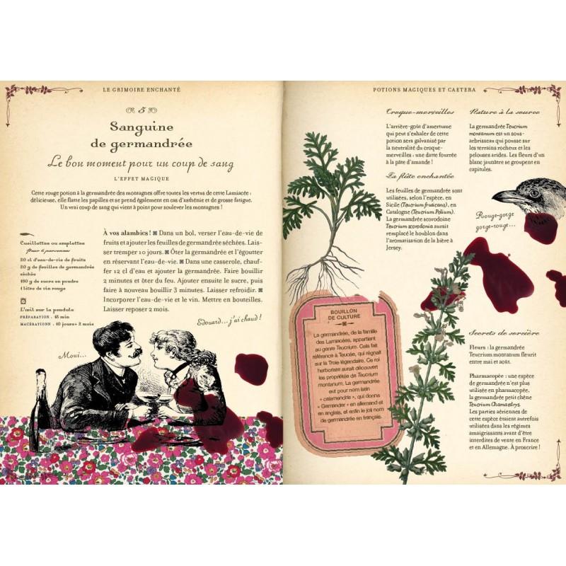 Potages et breuvages, mes recettes de sorcière. Le grimoire enchanté - Brigitte Bulard-Cordeau