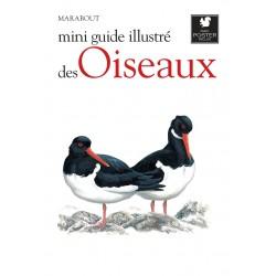 Mini guide illustré des oiseaux