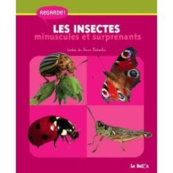 Regarde - Les insectes minuscules et surprenants