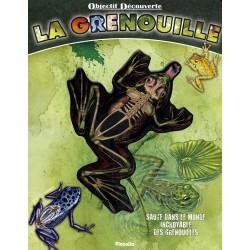 Objectif découverte - La grenouille - Saute dans le monde incroyable des grenouilles