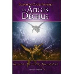 Les anges déchus - Qui sont-ils ? Où vivent-ils ? Que veulent-ils ?