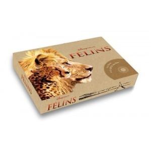 Félins avec 1 DVD